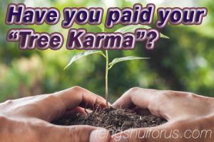 tree-karma