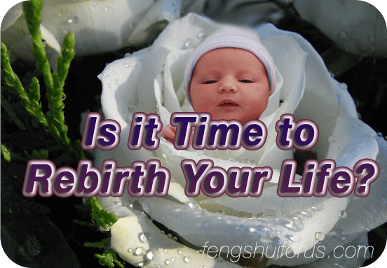 is-it-time-to-rebirth-your-life
