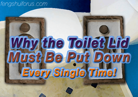 put-toilet-seat-down