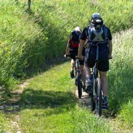 Biking/mountain biking