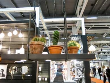 plantsonlamp