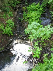 The outflow of the Small dam