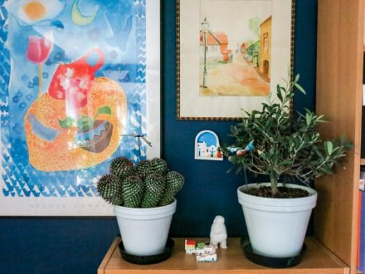 plants, art