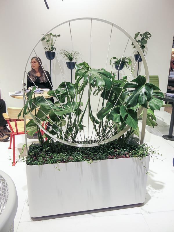 NOLA plantbox with trellis.