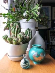 jungleanimals. plants