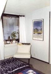 Window in the bedroom