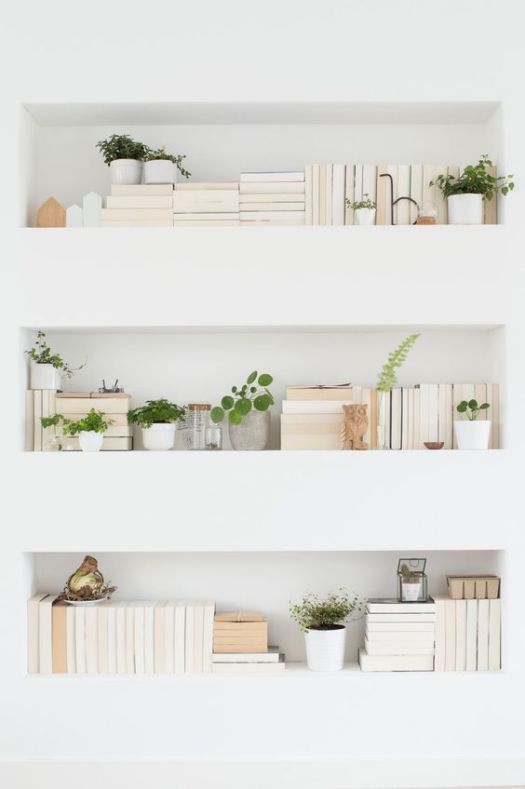 books, bookcase