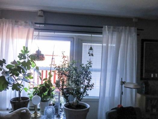 livingroomwindow, blinds