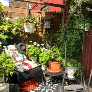 tropicool, patio