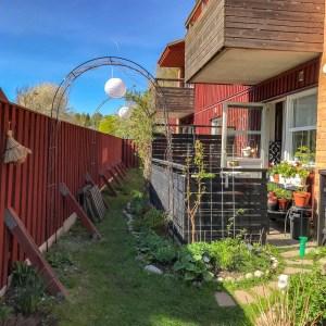 garden, springtime