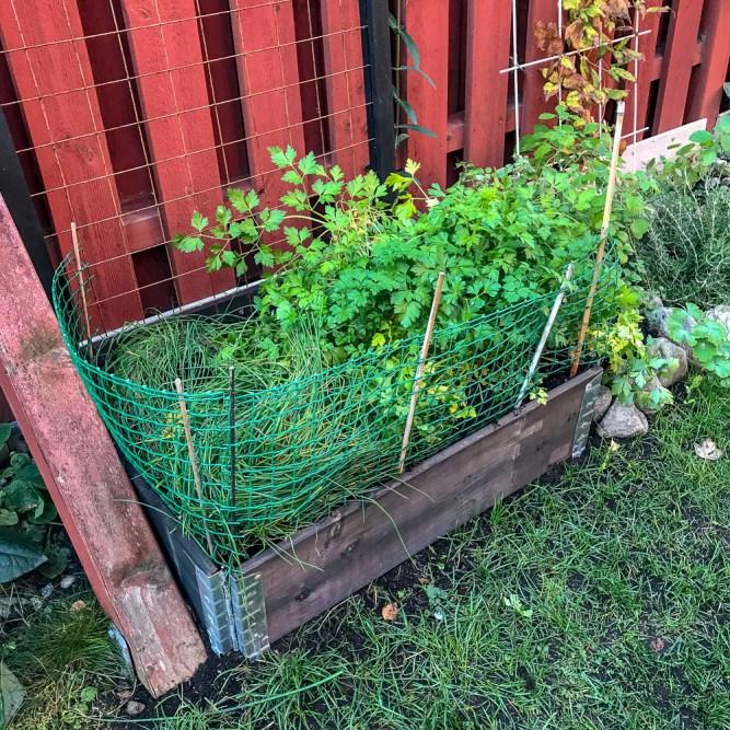 New plantbox
