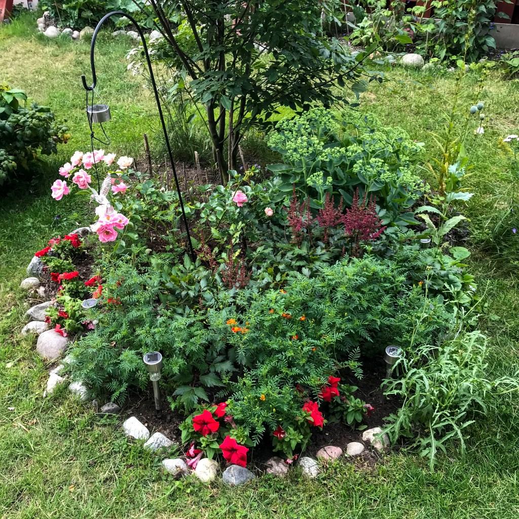 garden, flowerbed