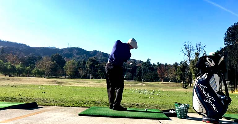 Golf Arm Swing