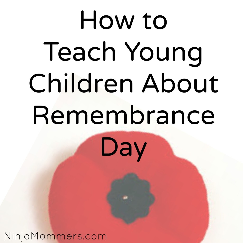 Teach Children About Remembrance Day How To Guide