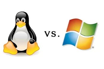 Linux or Windows Hosting: Which one is Best?
