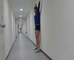 Ejercicios de preparación voleibol