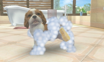 nintendogs-and-cats-review-screenshot-2