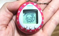 Eevee Tamagotchi Photo
