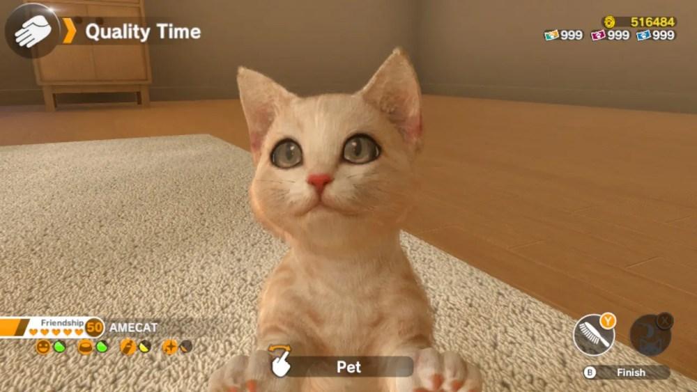Little Friends: Dogs And Cats Screenshot 1