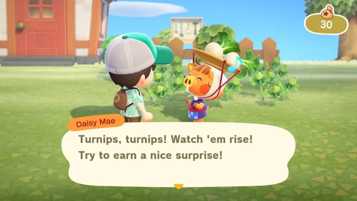 Animal Crossing: New Horizons Daisy Mae Screenshot