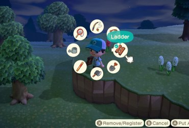 Animal Crossing New Horizons Tool Ring Screenshot