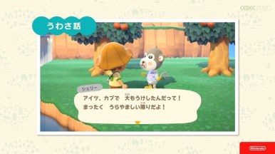 Animal Crossing 011