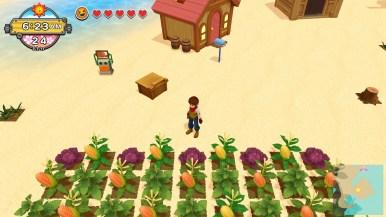 Harvest Moon Un Monde à Cultiver (10)