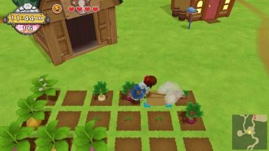 Harvest Moon Un Monde à Cultiver (20)