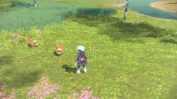 Légendes Pokémon Arceus (52)