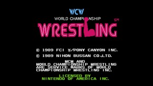 World Championship Wrestling (NES) Game Hub