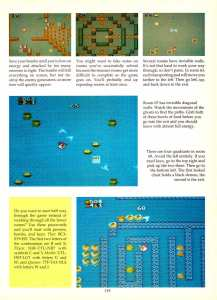 Game Player's Encyclopedia of Nintendo Games page 119