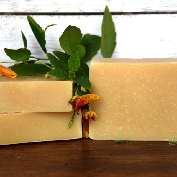 All Natural Jewelweed Goat Milk Soap