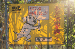 """""""Pick up the pooh"""" sign"""