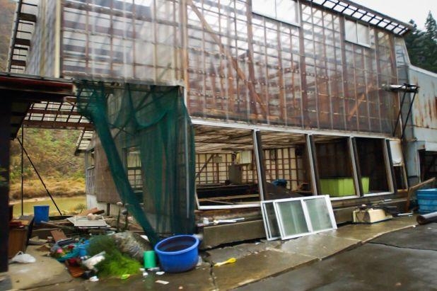 Un mes después del terremoto un criadero en Yamakoshi no podía reanudar sus labores. Fotografía: Jiji.