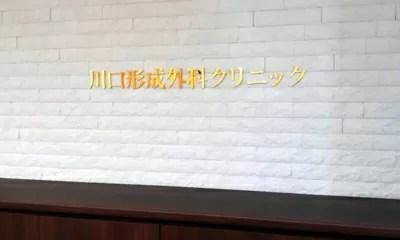 埼玉でおすすめの新型出生前診断クリニック(川口形成外科クリニック)