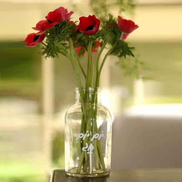ואזה לפרחים - יום יום חג