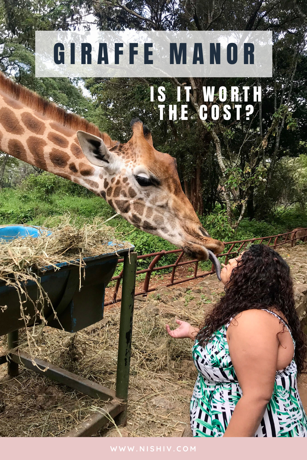 Giraffe Manor, Kenya. Is It Worth The Cost? The Giraffe Centre Nairobi, Nishi V