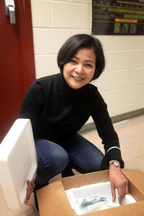 A woman is crouched over an insulated box full of milk samples.