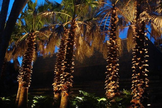 sarasota fl outdoor lighting