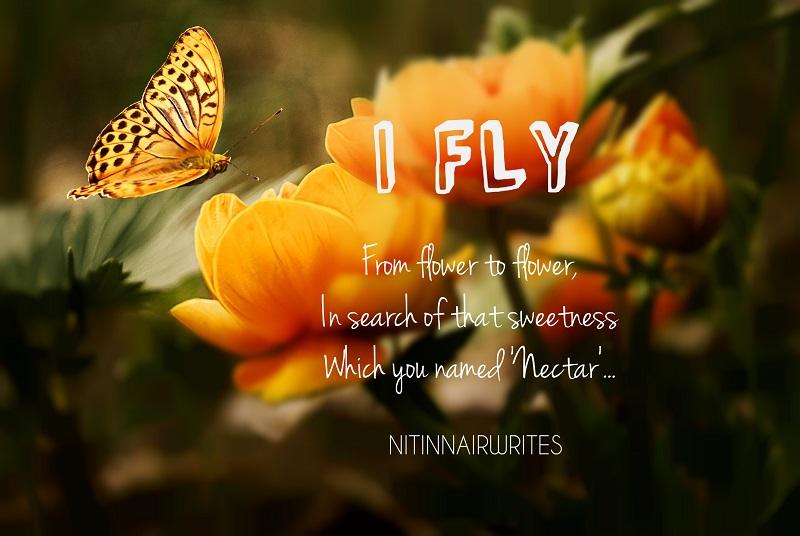 I Fly - Poem