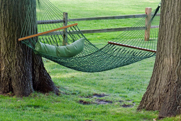 Hammock Between Trees