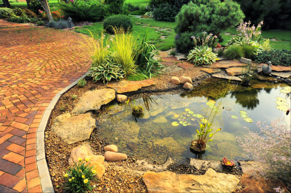 Hardscape With Pond