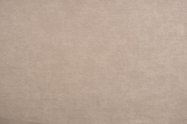 Taupe Wall