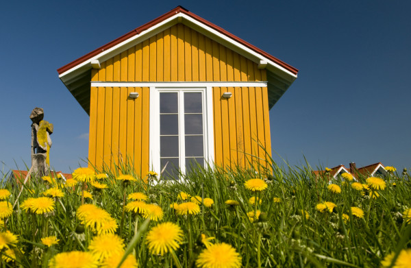 Tiny Yellow Home