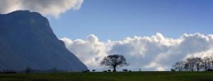 Pourquoi la permaculture en Savoie ?
