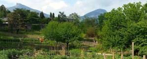 Cultiver son jardin biologique en Savoie, même sans terrain
