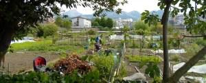 Des jardins au cœur du futur quartier de La Cassine à Chambéry ?