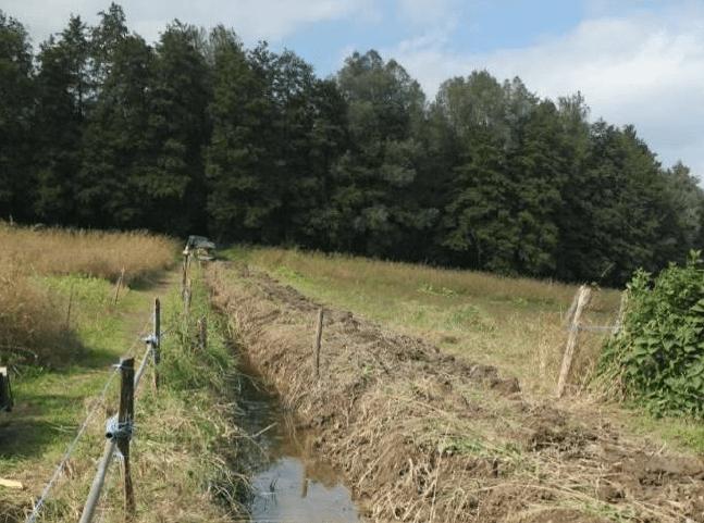 marais permaculture savoie