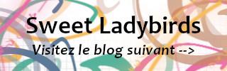 Bouton pour passer au blog suivant
