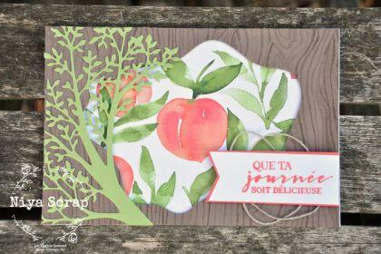 "Niya Scrap - Carte ""moodboard"" - Blog Hop des Sweet Ladybirds - Matériel Stampin' Up!"